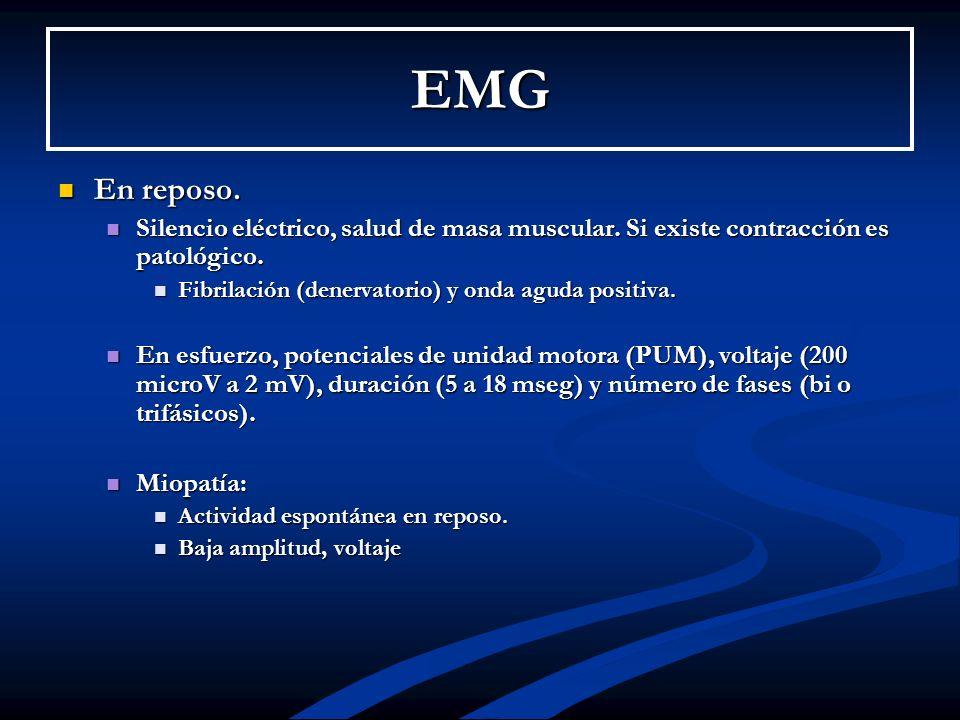 EMG En reposo. En reposo. Silencio eléctrico, salud de masa muscular. Si existe contracción es patológico. Silencio eléctrico, salud de masa muscular.