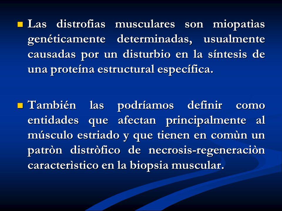 Las distrofias musculares son miopatìas genéticamente determinadas, usualmente causadas por un disturbio en la síntesis de una proteína estructural es