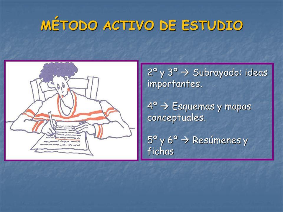 MÉTODO ACTIVO DE ESTUDIO 2º y 3º Subrayado: ideas importantes. 4º Esquemas y mapas conceptuales. 5º y 6º Resúmenes y fichas