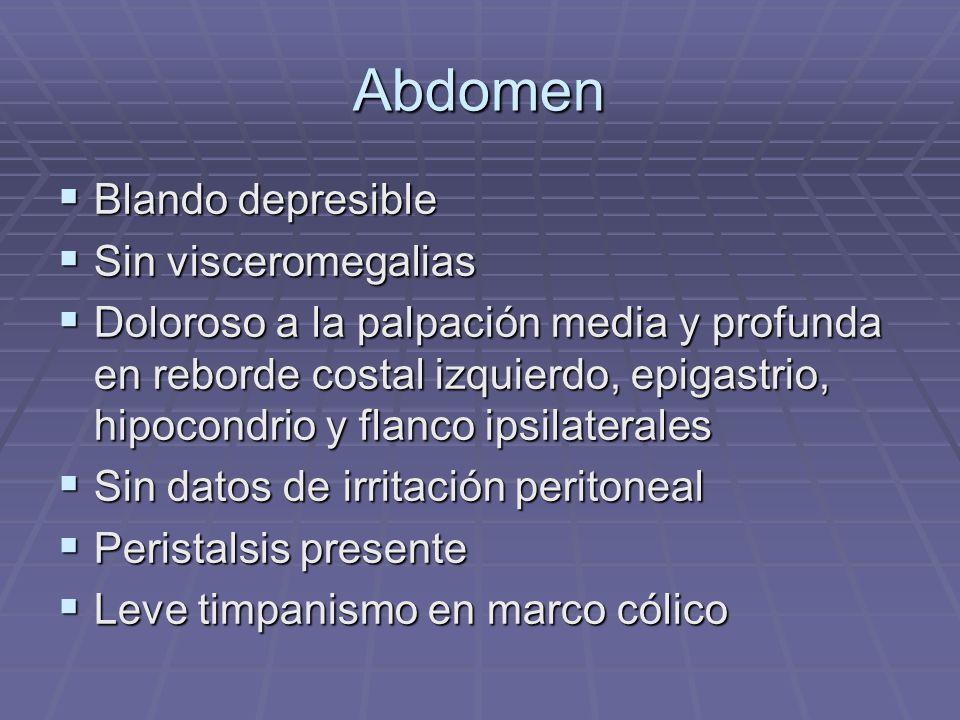 Abdomen Blando depresible Blando depresible Sin visceromegalias Sin visceromegalias Doloroso a la palpación media y profunda en reborde costal izquier
