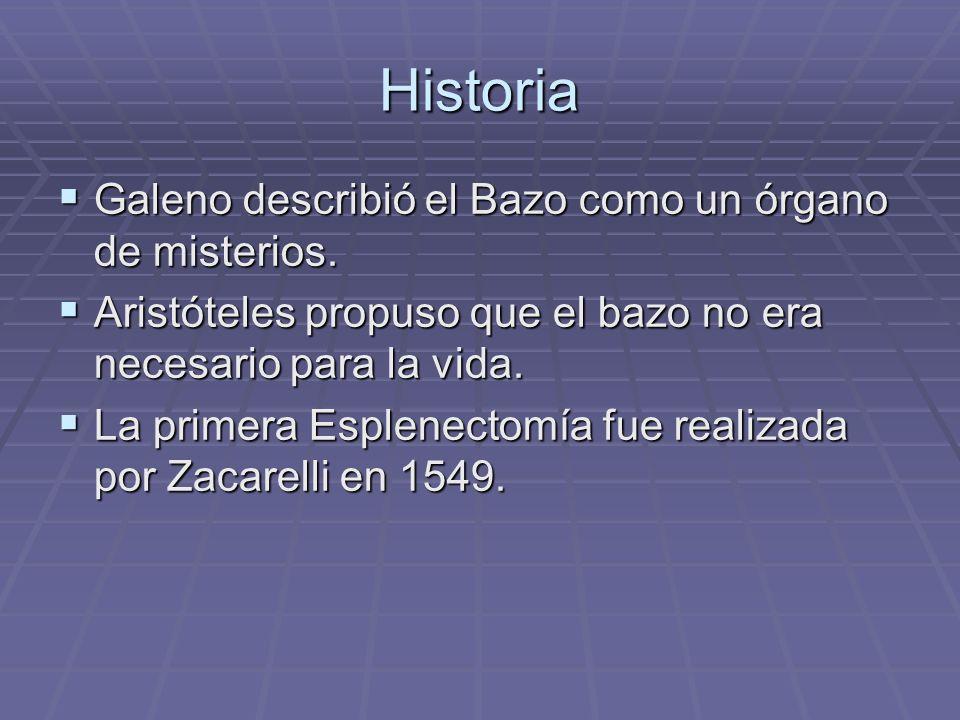 Historia Galeno describió el Bazo como un órgano de misterios. Galeno describió el Bazo como un órgano de misterios. Aristóteles propuso que el bazo n
