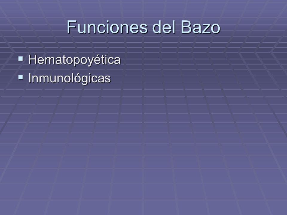 Funciones del Bazo Hematopoyética Hematopoyética Inmunológicas Inmunológicas