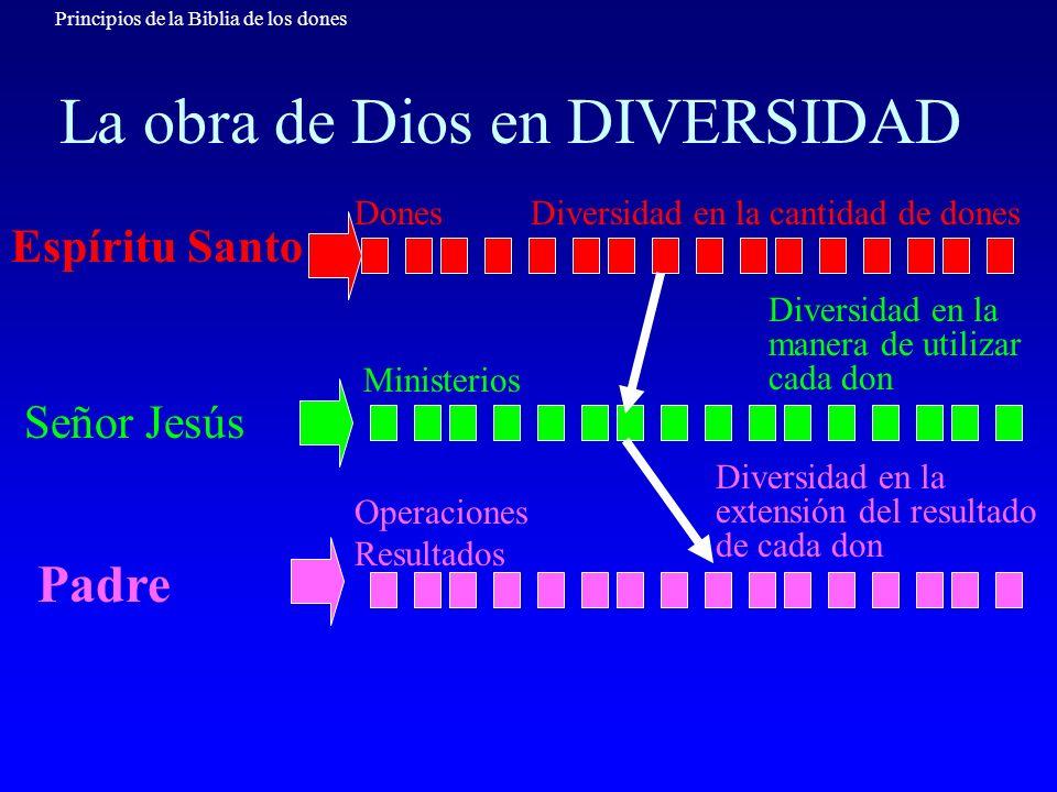 Principios de la Biblia de los dones La obra de Dios en DIVERSIDAD Espíritu Santo Señor Jesús Padre Diversidad en la cantidad de dones Diversidad en l