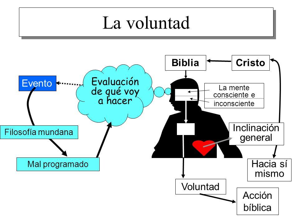 15 La voluntad Evento Evaluación de qué voy a hacer Filosofía mundana Mal programado La mente consciente e inconsciente Hacia sí mismo Cristo Biblia I