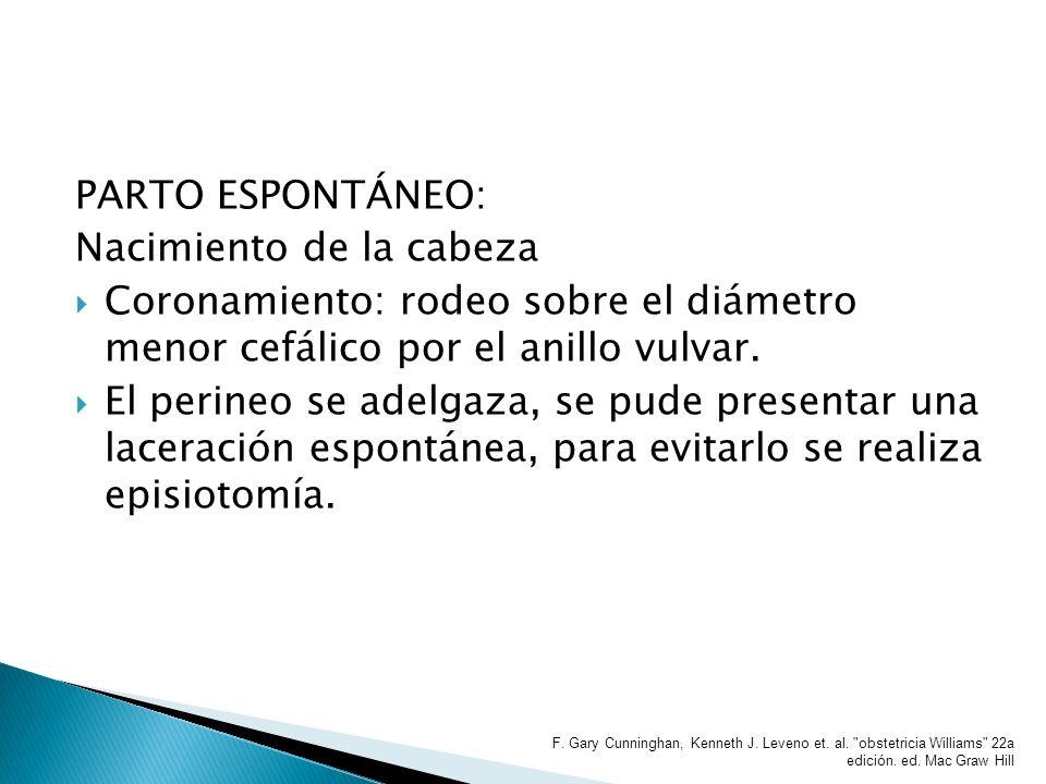 PARTO ESPONTÁNEO: Nacimiento de la cabeza Coronamiento: rodeo sobre el diámetro menor cefálico por el anillo vulvar. El perineo se adelgaza, se pude p