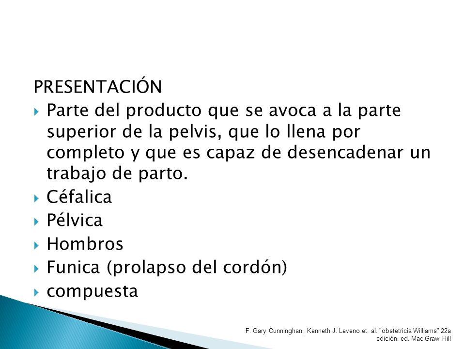 POSICIÓN: Relación que guarda el dorso del producto con el lado derecho o izquierda de la madre.