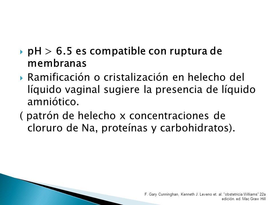 pH > 6.5 es compatible con ruptura de membranas Ramificación o cristalización en helecho del líquido vaginal sugiere la presencia de líquido amniótico