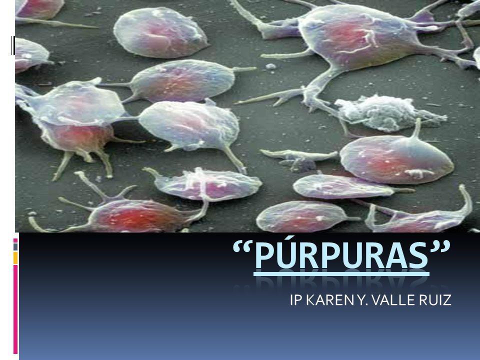 IP KAREN Y. VALLE RUIZ