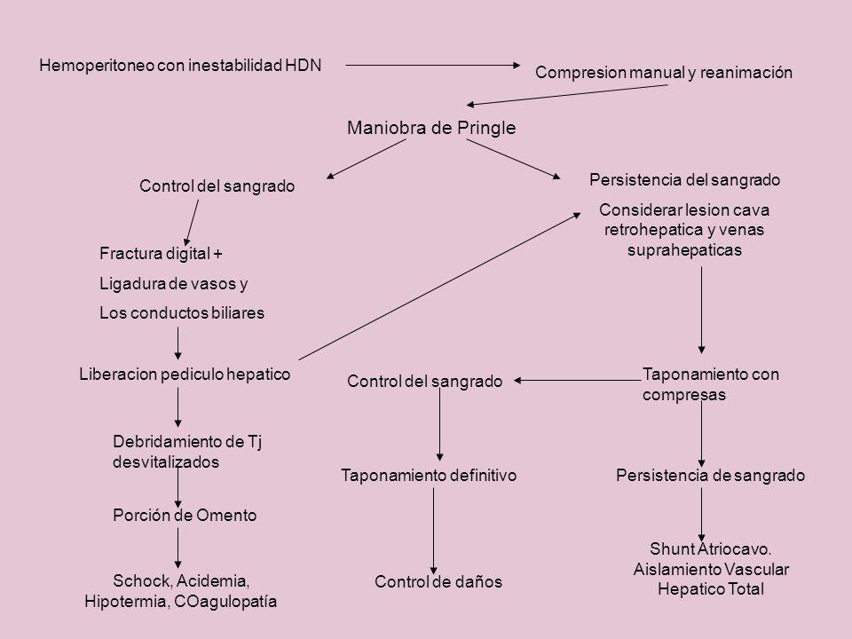 Maniobra de Pringle Hemoperitoneo con inestabilidad HDN Compresion manual y reanimación Control del sangrado Fractura digital + Ligadura de vasos y Lo