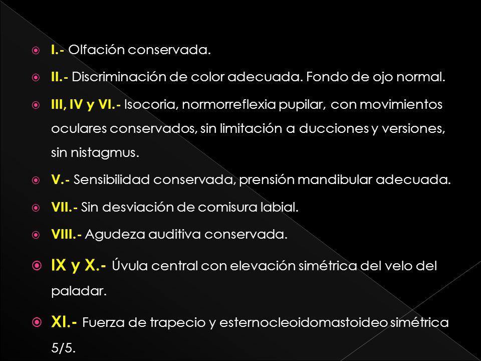 I.- Olfación conservada. II.- Discriminación de color adecuada. Fondo de ojo normal. III, IV y VI.- Isocoria, normorreflexia pupilar, con movimientos