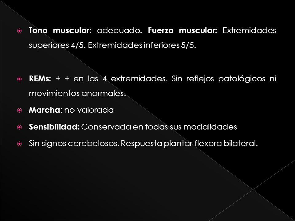 Tono muscular: adecuado. Fuerza muscular: Extremidades superiores 4/5. Extremidades inferiores 5/5. REMs: + + en las 4 extremidades. Sin reflejos pato
