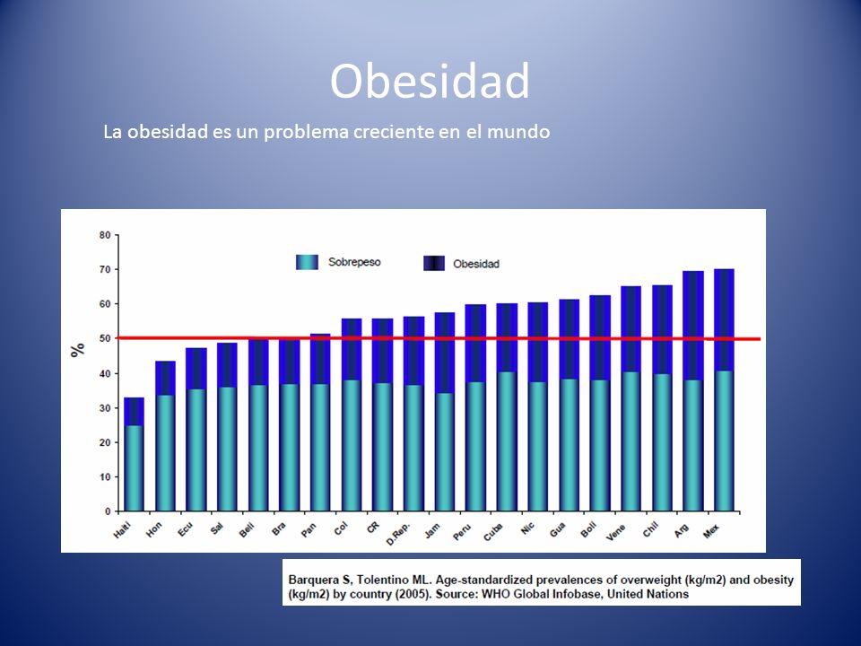 Obesidad La obesidad es un problema creciente en el mundo