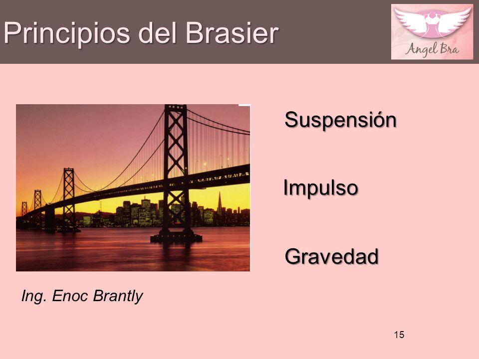 Principios del Brasier 15 Suspensión Impulso Gravedad Ing. Enoc Brantly
