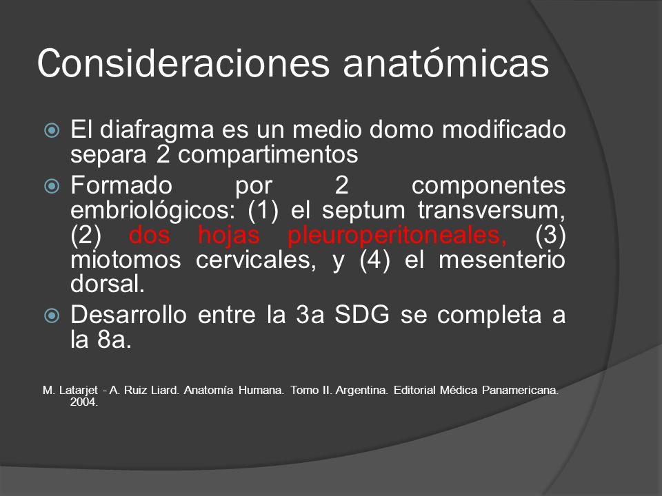 Consideraciones anatómicas El diafragma es un medio domo modificado separa 2 compartimentos Formado por 2 componentes embriológicos: (1) el septum tra