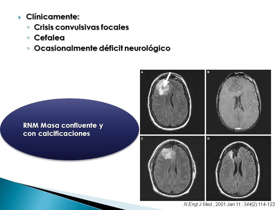 Clínicamente: Clínicamente: Crisis convulsivas focales Crisis convulsivas focales Cefalea Cefalea Ocasionalmente déficit neurológico Ocasionalmente dé