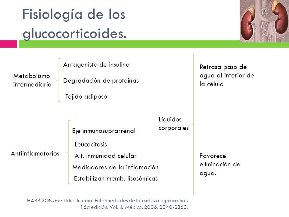Metabolismo intermediario Antagonista de insulina Degradación de proteínas Tejido adiposo Fisiología de los glucocorticoides. HARRISON. Medicina Inter