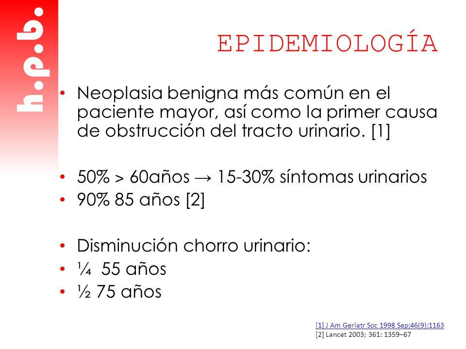 EPIDEMIOLOGÍA Neoplasia benigna más común en el paciente mayor, así como la primer causa de obstrucción del tracto urinario. [1] 50% ˃ 60años 15-30% s
