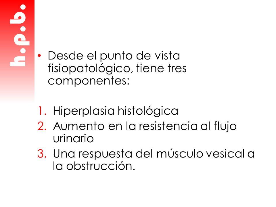 Desde el punto de vista fisiopatológico, tiene tres componentes: 1.Hiperplasia histológica 2.Aumento en la resistencia al flujo urinario 3.Una respues