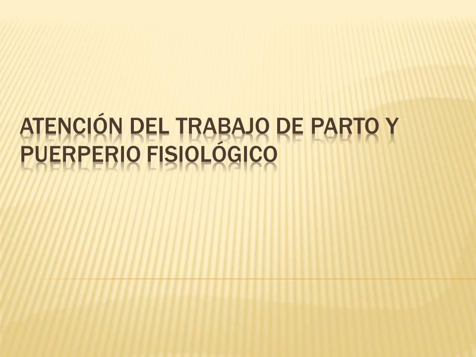Objetivo: Fácil de reparar Prevención del cistocele, rectocele e incontinencia urinaria.