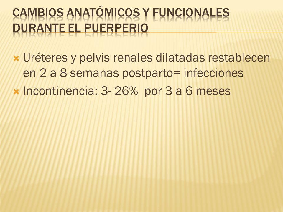 Uréteres y pelvis renales dilatadas restablecen en 2 a 8 semanas postparto= infecciones Incontinencia: 3- 26% por 3 a 6 meses