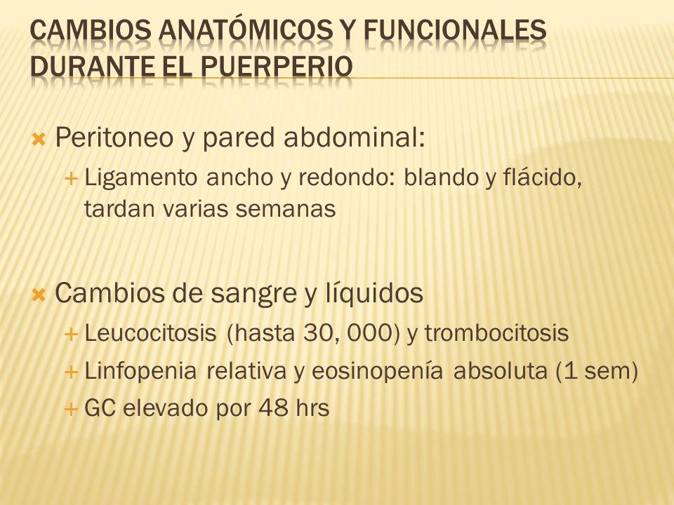Peritoneo y pared abdominal: Ligamento ancho y redondo: blando y flácido, tardan varias semanas Cambios de sangre y líquidos Leucocitosis (hasta 30, 0