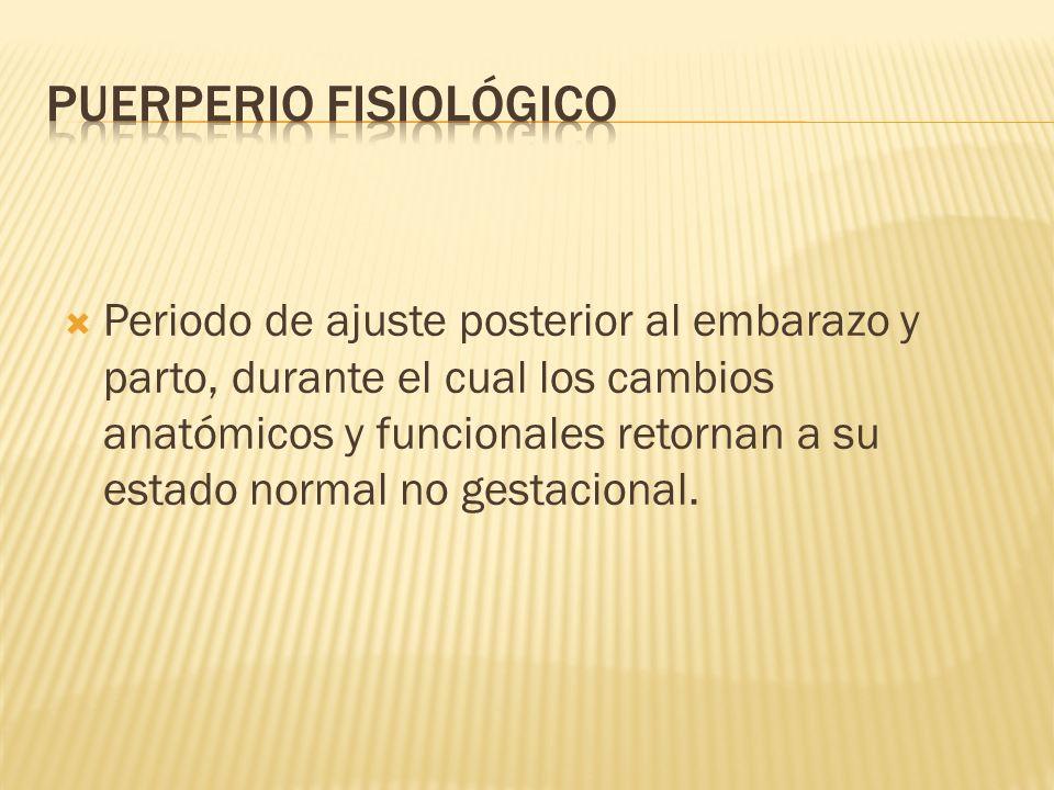 Periodo de ajuste posterior al embarazo y parto, durante el cual los cambios anatómicos y funcionales retornan a su estado normal no gestacional.