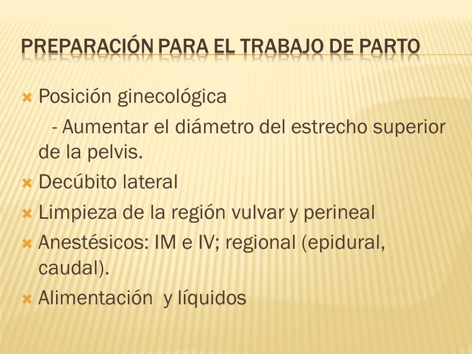 Posición ginecológica - Aumentar el diámetro del estrecho superior de la pelvis. Decúbito lateral Limpieza de la región vulvar y perineal Anestésicos: