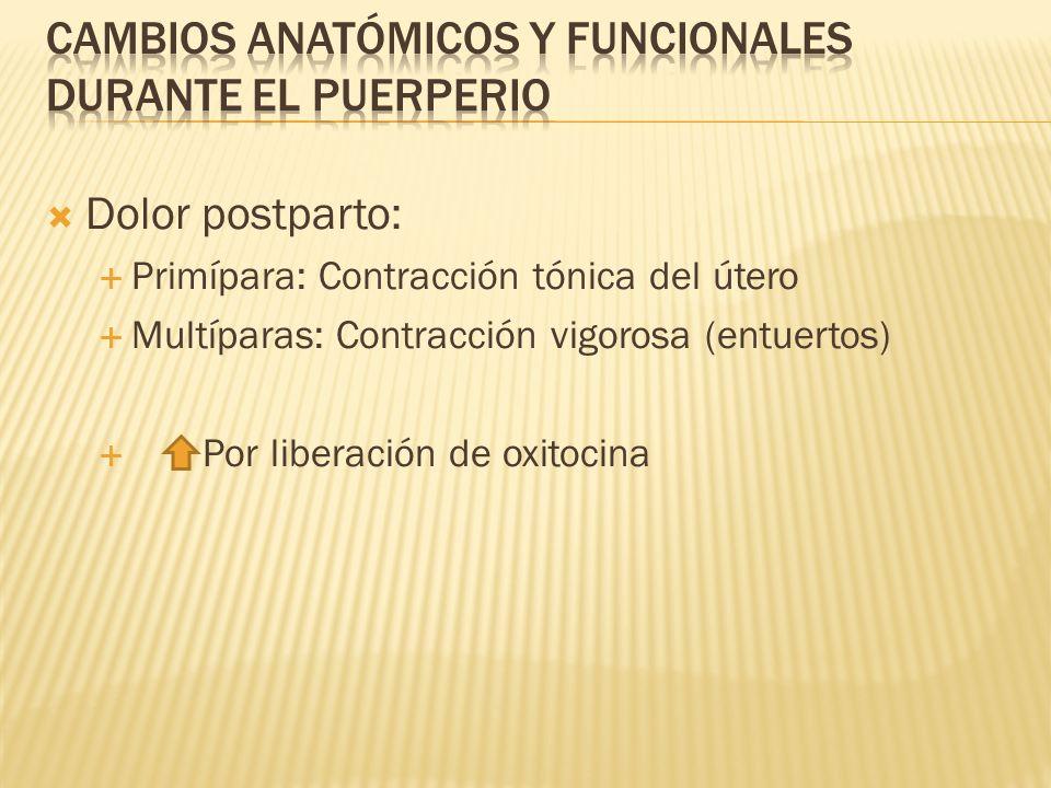 Dolor postparto: Primípara: Contracción tónica del útero Multíparas: Contracción vigorosa (entuertos) Por liberación de oxitocina