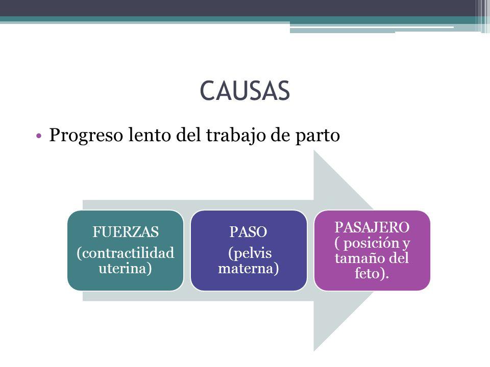 CAUSAS Progreso lento del trabajo de parto FUERZAS (contractilidad uterina) PASO (pelvis materna) PASAJERO ( posición y tamaño del feto).