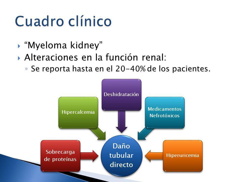 Myeloma kidney Alteraciones en la función renal: Se reporta hasta en el 20-40% de los pacientes. Daño tubular directo Sobrecarga de proteínas Hipercal