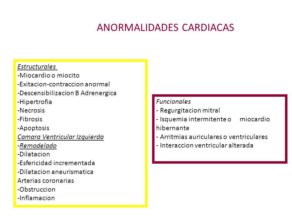 ANORMALIDADES CARDIACAS Estructurales -Miocardio o miocito -Exitacion-contraccion anormal -Descensibilizacion B Adrenergica -Hipertrofia -Necrosis -Fi