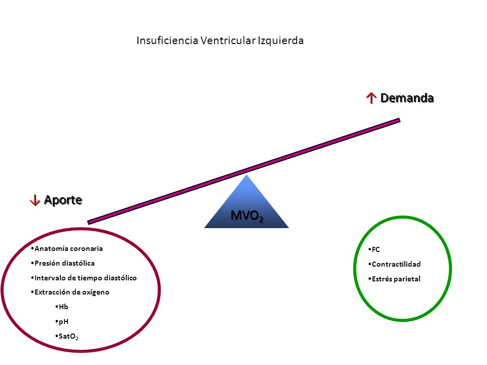 MVO 2 Aporte Aporte Demanda Demanda FC Contractilidad Estrés parietal Anatomía coronaria Presión diastólica Intervalo de tiempo diastólico Extracción