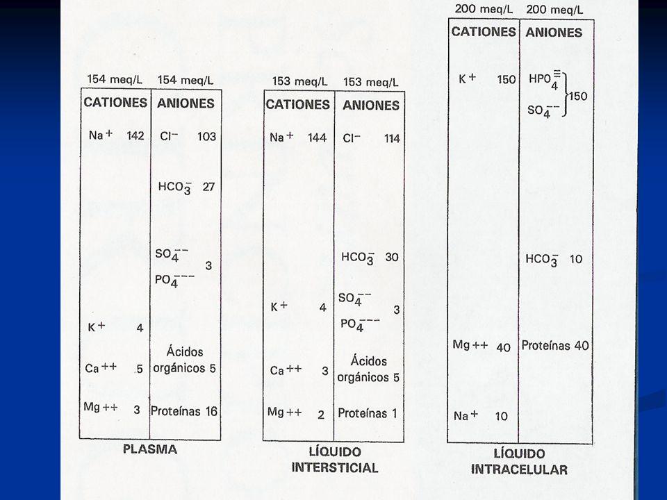 Líquidos y Electrolitos Hipokalemia: 10 a 20 mEq/hora.