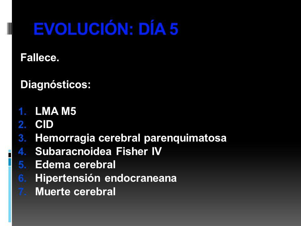EVOLUCIÓN: DÍA 5 Fallece. Diagnósticos: 1. LMA M5 2. CID 3. Hemorragia cerebral parenquimatosa 4. Subaracnoidea Fisher IV 5. Edema cerebral 6. Hiperte