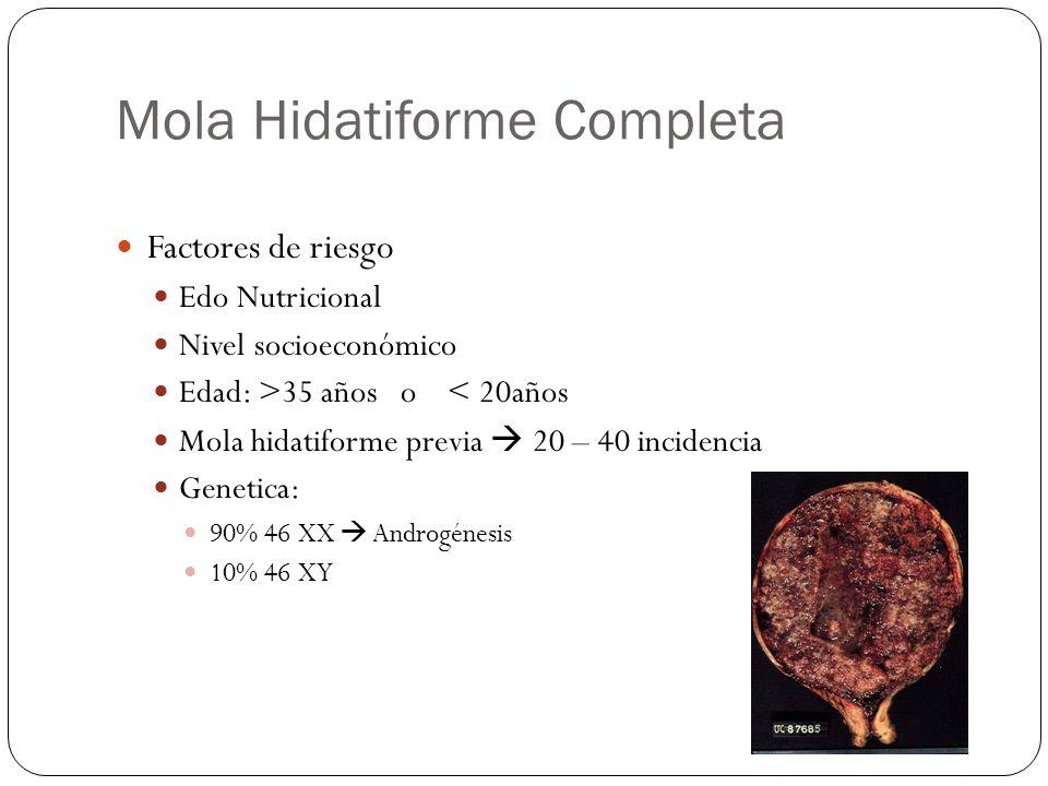 Mola Hidatiforme Completa Factores de riesgo Edo Nutricional Nivel socioeconómico Edad: >35 años o < 20años Mola hidatiforme previa 20 – 40 incidencia