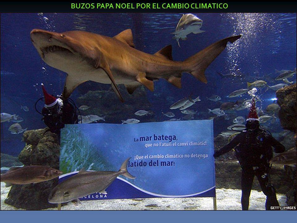 BUZOS PAPA NOEL POR EL CAMBIO CLIMATICO