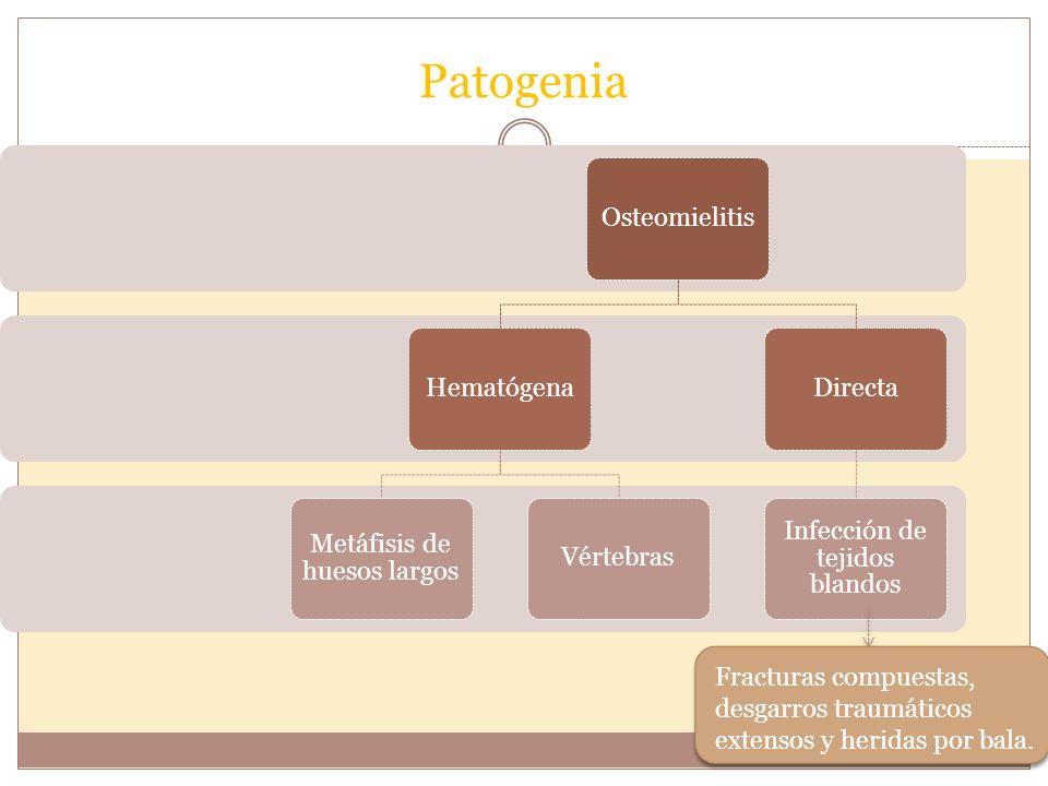 PATOGENIA Patogenia Por contigüidad Inoculación directa Diseminación (hematógena) + Frecuente