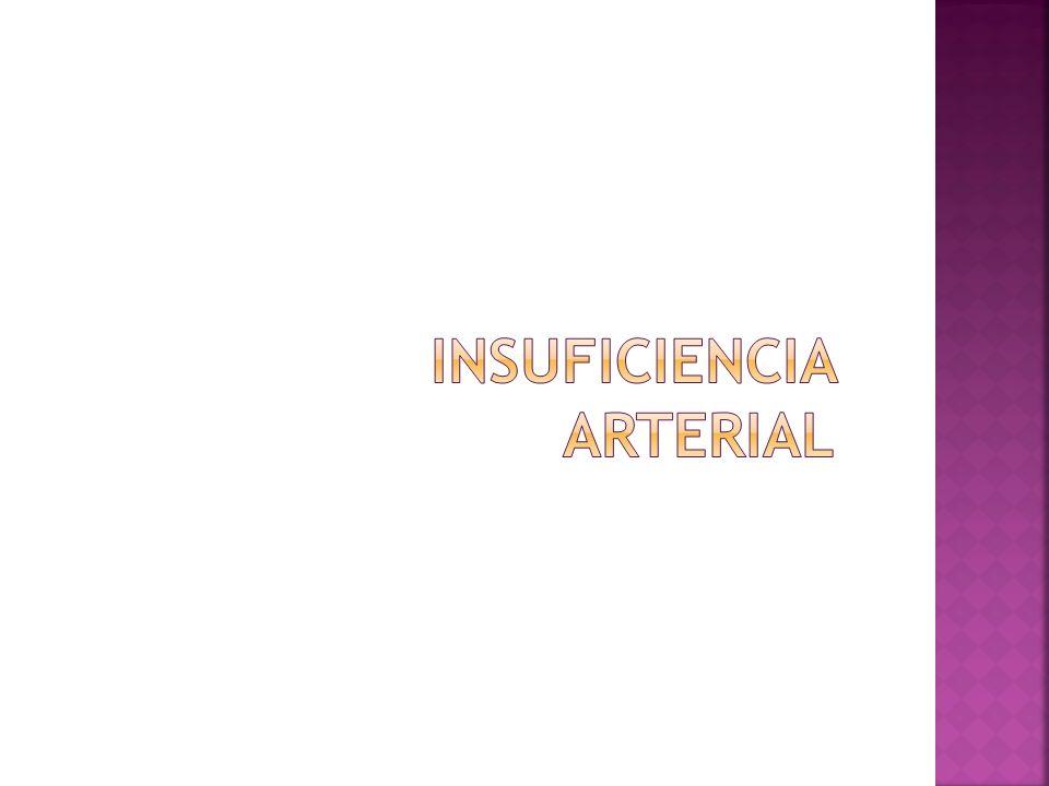 1.Interna o íntima: endotelio, lámina basal y capa conjuntiva subendotelial.