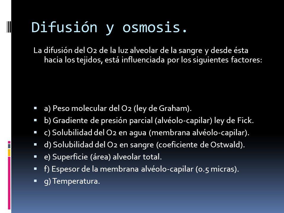 Difusión y osmosis. La difusión del O2 de la luz alveolar de la sangre y desde ésta hacia los tejidos, está influenciada por los siguientes factores:
