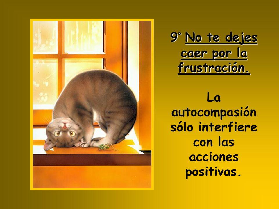 9°No te dejes caer por la frustración. 9° No te dejes caer por la frustración. La autocompasión sólo interfiere con las acciones positivas.