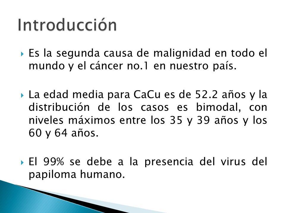 Clase I: Normal Clase II: Inflamatorias (con agente etiológico o inespecíficas) Clase III: Sospechoso con displasia Clase IV: Carcinoma in situ Clase V: Cáncer invasor