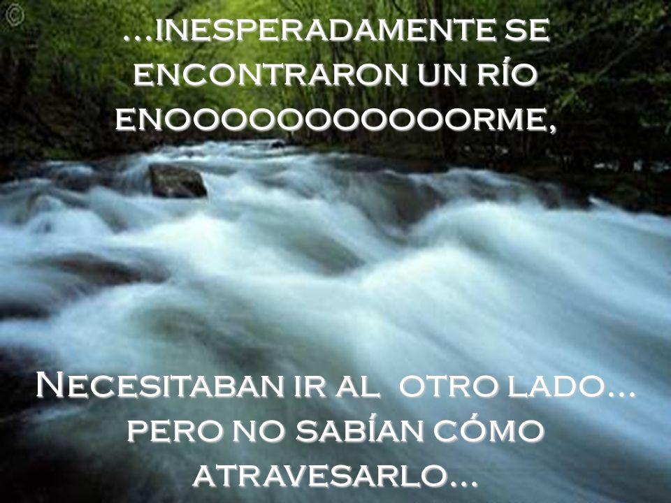...inesperadamente se encontraron un río enooooooooooorme, Necesitaban ir al otro lado...