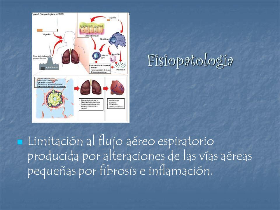 Fisiopatología Fisiopatología Limitación al flujo aéreo espiratorio producida por alteraciones de las vías aéreas pequeñas por fibrosis e inflamación.