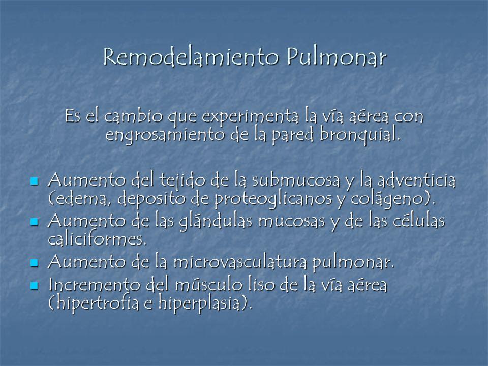 Remodelamiento Pulmonar Es el cambio que experimenta la vía aérea con engrosamiento de la pared bronquial. Aumento del tejido de la submucosa y la adv
