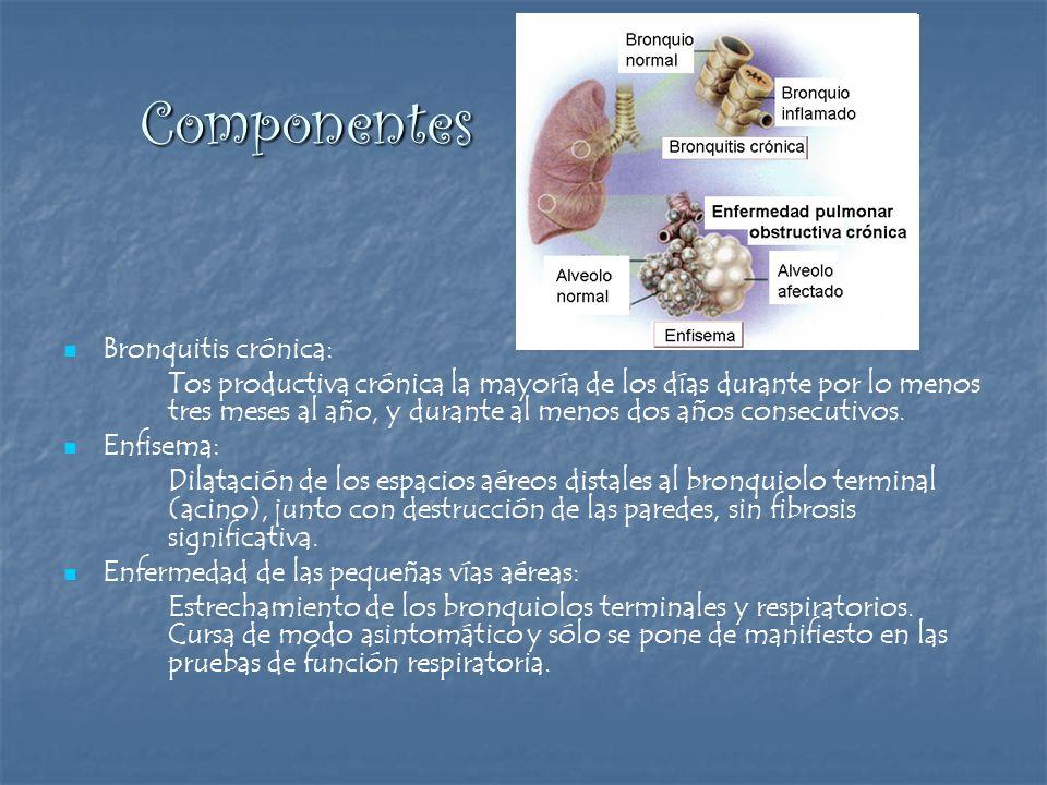 Componentes Componentes Bronquitis crónica: Tos productiva crónica la mayoría de los días durante por lo menos tres meses al año, y durante al menos d
