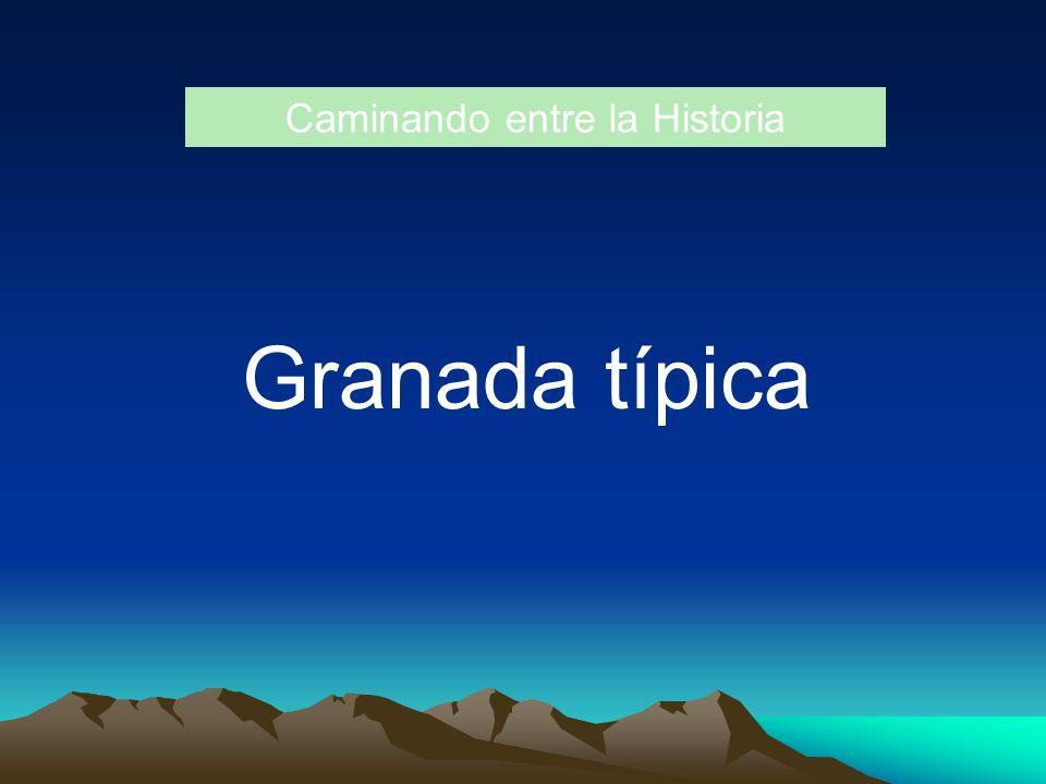 Caminando entre la Historia Granada típica