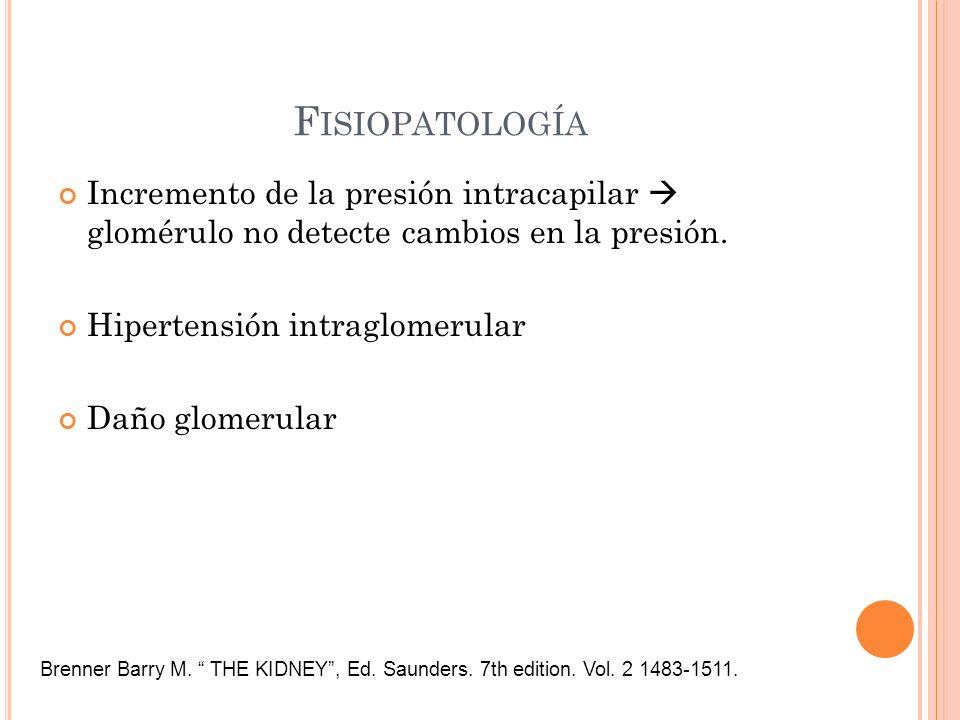 F ISIOPATOLOGÍA Incremento de la presión intracapilar glomérulo no detecte cambios en la presión. Hipertensión intraglomerular Daño glomerular Brenner