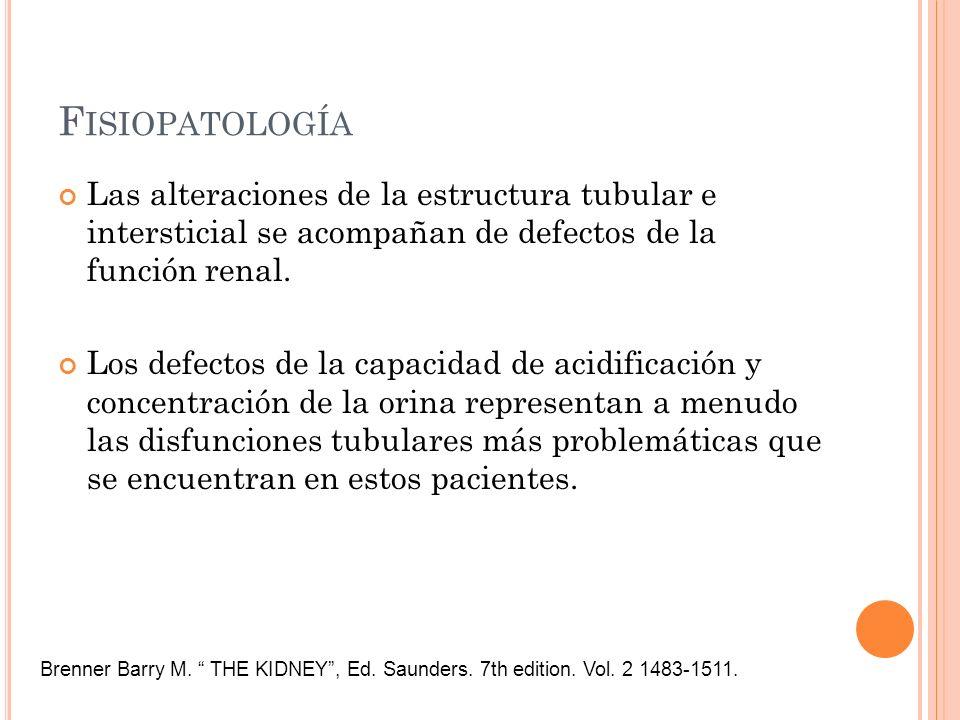 F ISIOPATOLOGÍA Las alteraciones de la estructura tubular e intersticial se acompañan de defectos de la función renal. Los defectos de la capacidad de
