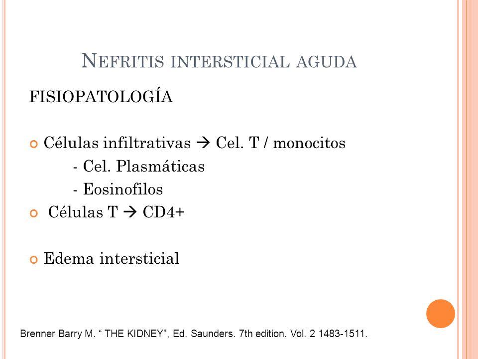 N EFRITIS INTERSTICIAL AGUDA FISIOPATOLOGÍA Células infiltrativas Cel. T / monocitos - Cel. Plasmáticas - Eosinofilos Células T CD4+ Edema intersticia