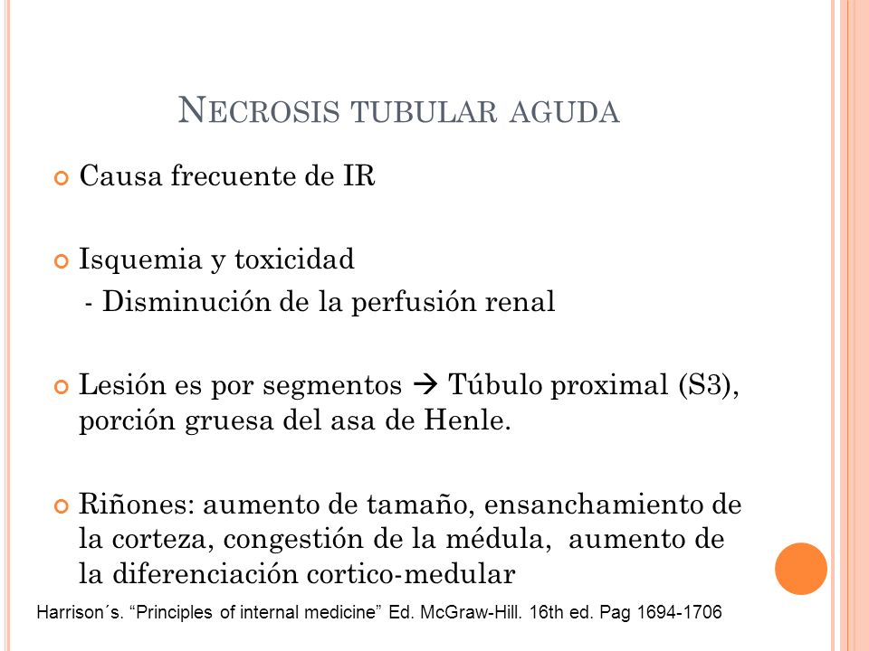 Causa frecuente de IR Isquemia y toxicidad - Disminución de la perfusión renal Lesión es por segmentos Túbulo proximal (S3), porción gruesa del asa de
